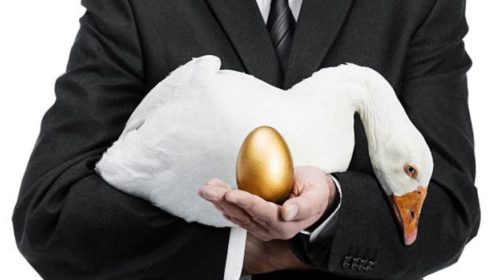 Killing the goose that laid the golden egg