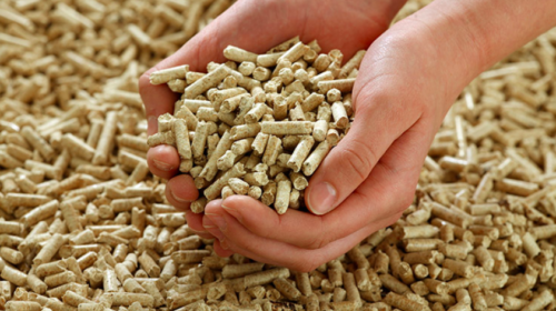 Smithers Pellet Ltd to redevelop particle board facility to produce pellets