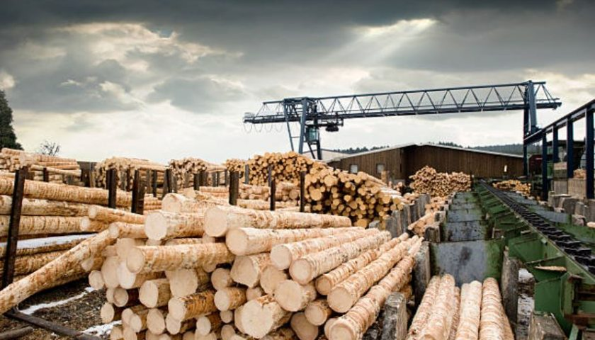 Forestry and legumes shippers say railways prioritized other commodities