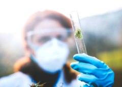 CBD-Infused Beverages Achieve Quality and Clarity Breakthrough Utilizing Pressure BioSciences' Ultra Shear Technology Platform