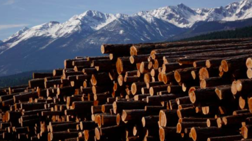 Interfor says it's shipping more lumber from Canada after China tariffs on U.S.