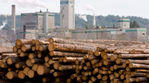 Surging lumber prices prompt record segment profits and surging third-quarter results