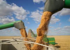Canadian wheat exports to China soar amid U.S.-China tariff dispute