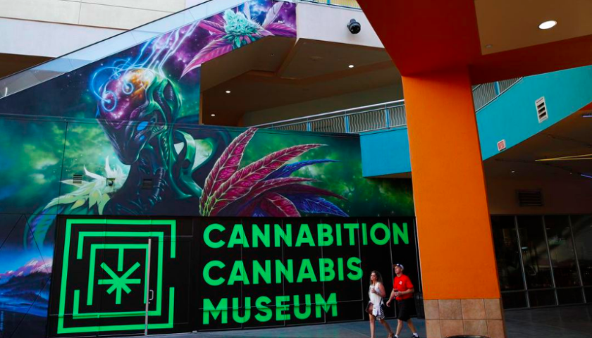 Cannabition, Vegas cannabis museum opens Thursday
