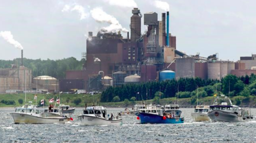 Pressure mounts on Ottawa to review N.S mill's contentious effluent pipeline