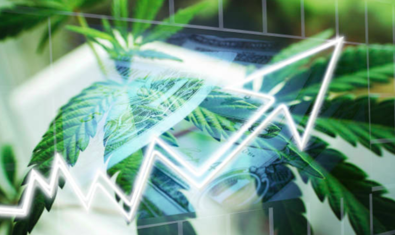 Organigram revenue soars in first full quarter of recreational sales