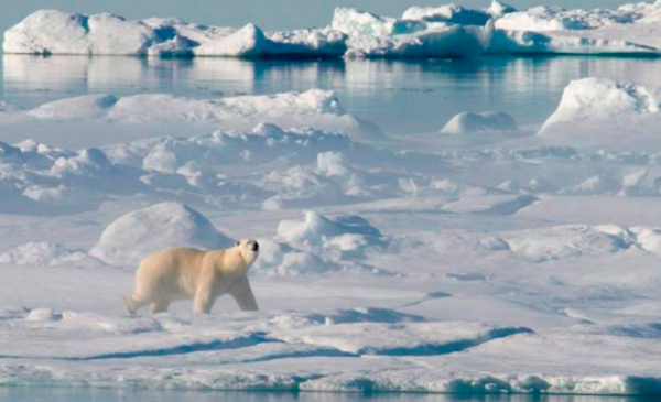 New federal Arctic policy focusses on human health, environment, infrastructure