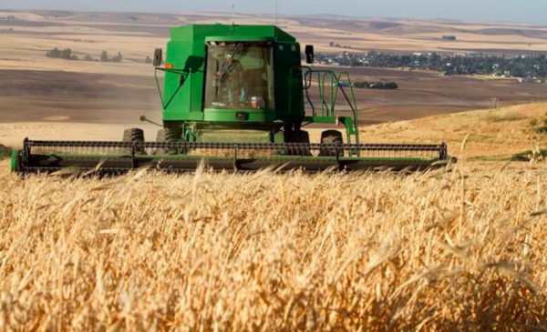 Paterson GlobalFoods to build mill in Winnipeg to handle western Canadian oats