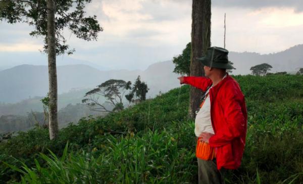 Junior miner discovers possible Spanish gold road in Ecuadorian jungle