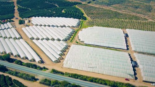 Isracann completes phase one construction at cannabis facility in Israel