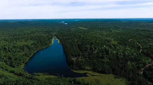 Sprott invests $13.6 million in New Found Gold