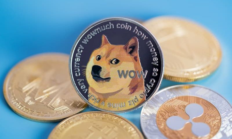 Interest in dogecoin on Google spikes by 3,000% in 2021 led by the US and Turkey