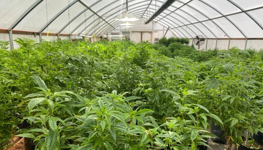 Global Hempcloses property for Colorado Hemp Agro-Industrial Zone