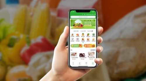 Plant Veda partners with one of the nation's largest Chinese-Canadian grocery delivery services